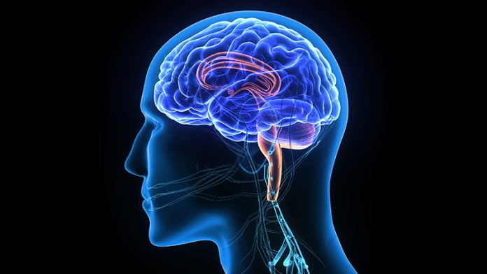 best neurosurgery hospital in Chandigarh